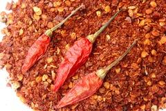 Torkade chilies Arkivfoton