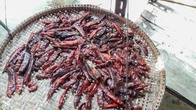 Torkade chilies på korg Royaltyfri Fotografi