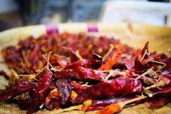 Torkade chilies som är klara för att laga mat Royaltyfri Fotografi
