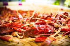 Torkade chilies som är klara för att laga mat Fotografering för Bildbyråer
