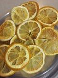 Torkade citronskivor fotografering för bildbyråer