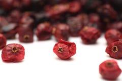 Torkade cranberries Arkivbild