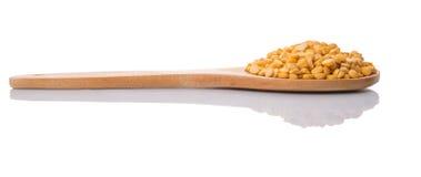 Torkade Dal Lentil On Wooden Spoon II Royaltyfria Bilder