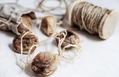 Torkade fikonträd på raden; healthful mat arkivfoto