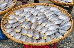 Torkade fishs av lokal mat Fotografering för Bildbyråer