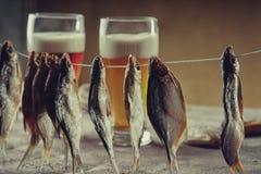 Torkade fisk- och ölexponeringsglas Royaltyfria Foton
