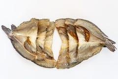 torkade fiskar Royaltyfri Bild