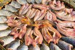 Torkade fiskar på den Thailand markören Arkivfoton