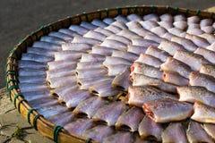 Torkade fiskar på den Thailand markören Royaltyfria Foton