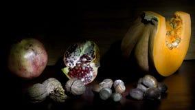 Torkade frukter av höstsäsongen royaltyfri foto