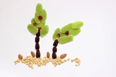 Torkade frukter och mandlar - symboler av Jweish semestrar Tu Bishvat Arkivbild