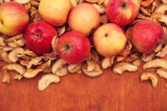 Torkade frukter och nya äpplen Royaltyfri Bild