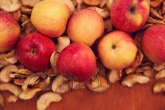 Torkade frukter och nya äpplen Royaltyfri Foto
