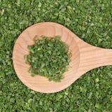 Torkade gräslökar arkivfoton