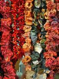 Torkade grönsaker och kryddor royaltyfri bild