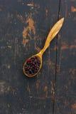 Torkade hagtornbär i en träsked royaltyfri foto