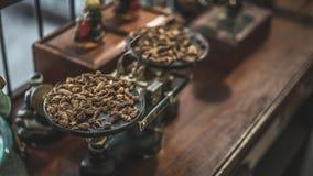 Torkade Herb On Weight Scale royaltyfri bild