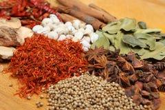 torkade indiska kryddor Arkivbild