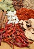 torkade indiska kryddor Royaltyfri Foto