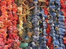 Torkade kryddor och grönsaker Royaltyfri Bild