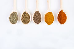 Torkade kryddor på skedar royaltyfria bilder
