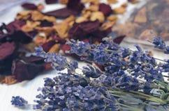 Torkade lavendelblommor och rosa kronblad royaltyfria bilder