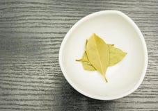 torkade leaves för fjärd bunke Royaltyfria Foton