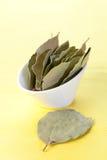 torkade leaves för fjärd bunke Arkivfoton