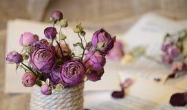 Torkade naturliga rosor, ett symbol av sorgsenhet och sorgsenhet royaltyfri foto