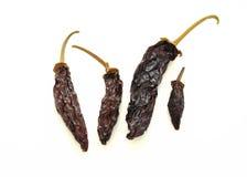 torkade peppar Fotografering för Bildbyråer