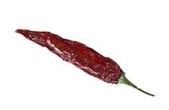Torkade peppar för röd chili Arkivfoton
