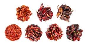 Torkade peppar för röd chili Fotografering för Bildbyråer