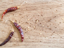 Torkade peppar för röd chili på träbräde Arkivbilder