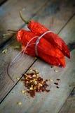 Torkade peppar, flingor och frö för röd chili Royaltyfri Fotografi