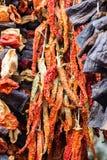 Torkade peppar och aubergine och färgglade kryddor Fotografering för Bildbyråer