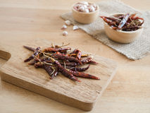 Torkade peppar och vitlök för röd chili Royaltyfria Foton