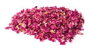torkade petals steg Royaltyfri Foto