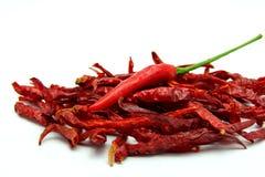 Torkade röda Chili Peppers på vit bakgrund Arkivfoto