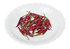Torkade röda peppar på en platta Royaltyfri Foto