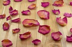 Torkade rosa kronblad på trä Royaltyfri Foto