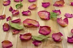Torkade rosa kronblad på trä Arkivbilder