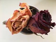 Torkade rosor i en silverkopp Arkivfoton