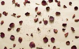 Torkade rosor på brun bakgrund Fotografering för Bildbyråer