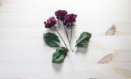 Torkade rosor på en trätabell Ställe för din text arkivfoto