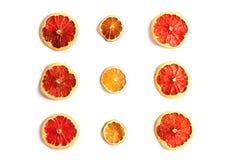 Torkade skivor av citruns som isoleras på vit royaltyfria bilder