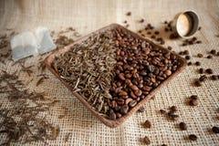 Torkade teblad och grillade kaffebönor: theine vs koffein royaltyfri bild