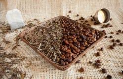 Torkade teblad och grillade kaffebönor: theine vs koffein arkivfoto