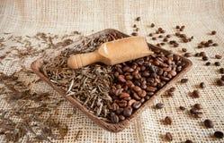 Torkade teblad och grillade kaffebönor: theine vs koffein fotografering för bildbyråer