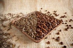 Torkade teblad och grillade kaffebönor: theine vs koffein arkivbilder