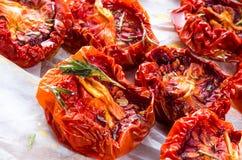 Torkade tomater Royaltyfria Bilder
